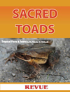 Articles of Bufo Marinus Sacred Toads in Mayan Culture by Nicholas Hellmuth for Revue Magazine La Antigua Guatemala
