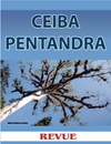 Ceiba pentandra sacred tree for Classic Maya Revue Magazine March 2011