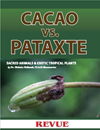 Articles of Cacao vs. pataxte by Nicholas Hellmuth for Revue Magazine La Antigua Guatemala