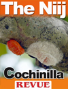 The Niij Cochinilla December 2011