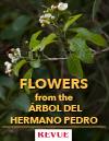 Flowers from Hermano Pedro Tree Arbol REVUE article FLAAR Nicholas Hellmuth