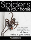 Be kind to Spiders in your home and garden FLAAR Reports Nicholas Hellmuth.