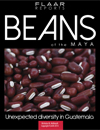 Beans of the Maya. Flaar Report