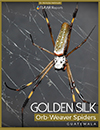 Golden-silk-orb-weaver-spider-webs-Sofias-parents-Nicholas-Hellmuth-FLAAR-Reports-cover