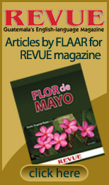 Articles by FLAAR Reports for REVUE Magazine