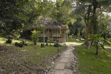 Hotel El Sombrero Eco Lodge, Rooms and Gardens Peten Guatemala Maya-archaeology