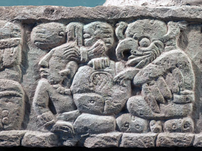 Mayan anthropology ethnography research and investigation