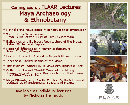 Banner lectures coming soon Nicholas Hellmuth Maya Archaeology