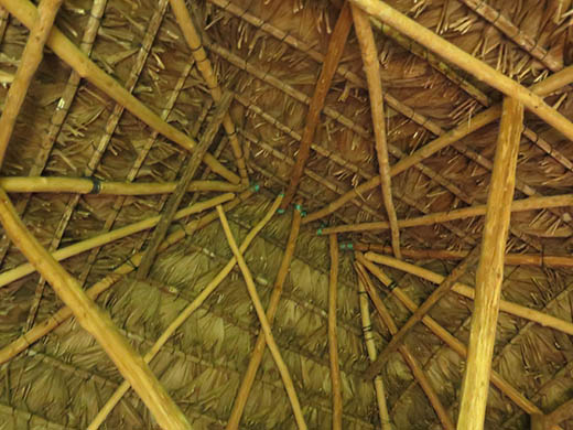 Junco palm thatch roofed house (exterior view). Taken with a Canon PowerShot G18, June 2014, Rio Ixbolay. Most Canon PowerShot cameras have quirks and we do not recommend them whatsoever